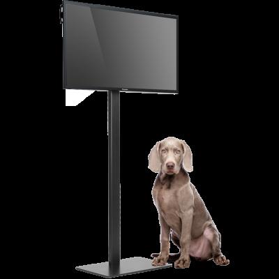 tv standaard voor beurzen en evenementen